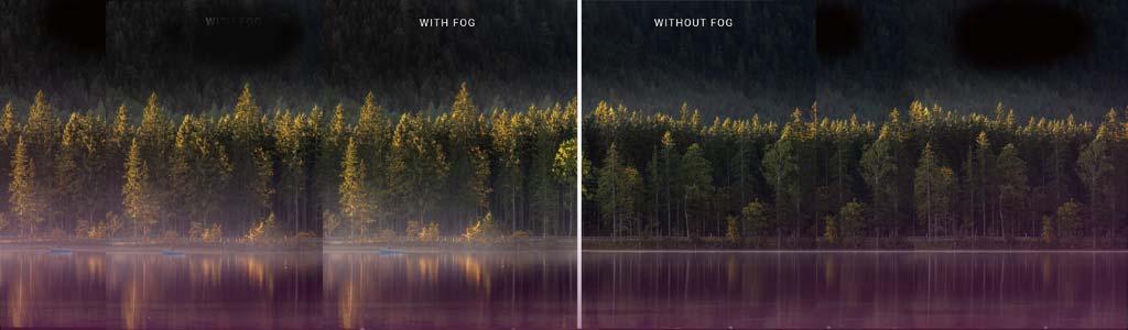 fog main picture